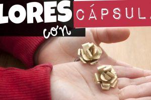 Flores con capsulas de cafe